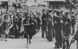 <p>Lithuanian militiamen in Kovno round up Jewish women. Kovno, Lithuania, June-July, 1941.</p>