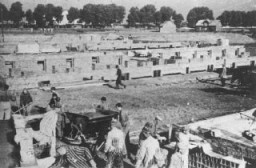 <p>Prisoners at forced labor building an extension to the camp. Auschwitz-Birkenau, Poland, 1942–43.</p>