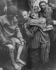 "<p>Former prisoners of <a href=""/narrative/7988"">Wöbbelin</a>, a subcamp of <a href=""/narrative/6811"">Neuengamme</a>, are taken to a hospital for medical attention. Germany, May 4, 1945.</p>"