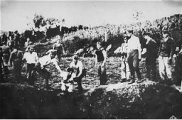<p>Ustasa (Croatian fascist) guards force a prisoner into a pit to be shot. Jasenovac concentration camp. Yugoslavia, probably 1942.</p>