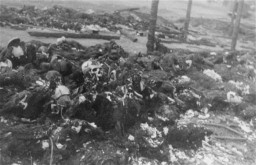 """<p>View of the charred remains of Jewish victims burned by the Germans near the Maly Trostinets concentration camp. Photograph taken ca. 1944.</p> <p>In the fall of 1943, the Germans destroyed the Minsk ghetto. The SS deported some Jews from Minsk to the<a href=""""/narrative/3790/en"""">Sobibor</a>killing center, and killed about 4,000 remaining Jews at Maly Trostinets.</p>"""