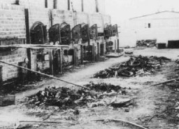 "<p>Charred remains of corpses near crematoria in the <a href=""/narrative/3168/en"">Majdanek</a> camp, after liberation. Poland, after July 22, 1944.</p>"