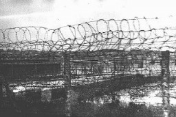 "<p>A section of barbed-wire fencing surrounding the <a href=""/narrative/4880/en"">Plaszow</a> camp. Plaszow, Poland, 1943-44.</p>"