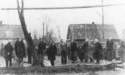 Cittadini polacchi impiccati dai Nazisti a Sosnowiec .