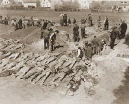 Cittadini tedeschi di Schwarzenfeld scavano le tombe per seppellire i resti di 140 Ebrei russi, ungheresi e polacchi riesumati da una fossa comune trovata vicino alla città.