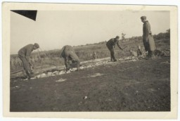 "<div class=""datapair"">German soldiers force Soviet prisoners of war to construct a rail line. Place uncertain, 1941-1942.</div>