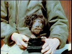 <p>US forces liberated the Buchenwald concentration camp on April 11, 1945. This footage records examples of Nazi atrocities (shrunken head, pieces of tattooed human skin, preserved skull and organs) discovered by the liberating troops.</p>