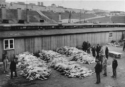 <p>Piles of corpses, soon after the liberation of the Mauthausen camp. Austria, after May 5, 1945.</p>