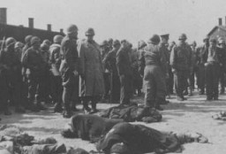 "<p>Generals Eisenhower, Patton, and Bradley view corpses of inmates at <a href=""/narrative/7757"">Ohrdruf</a>, a subcamp of Buchenwald. Germany, April 12, 1945.</p>"