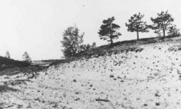 "<p>Site where members of <a href=""/narrative/2290/en"">Einsatzgruppe</a> A and Estonian <a href=""/narrative/6437/en"">collaborators</a> carried out a mass execution of Jews in September 1941. Kalevi-Liiva, <a href=""/narrative/5858/en"">Estonia</a>, after September 1944.</p>"