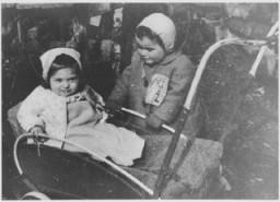 "<p>A <a href=""/narrative/2562/en"">child</a> wears the compulsory Jewish badge. The ""Z"" stands for the word ""Jew"" (<em>Zidov</em>) in Croatian. <a href=""/narrative/6153/en"">Yugoslavia</a>, ca. 1941.</p>"