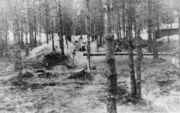 """<p>Execution site in the Ponary forest outside the <a href=""""/narrative/3169"""">Vilna</a> ghetto. Lithuania, 1941.</p>"""