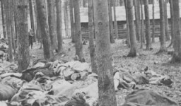 <p>Corpses of victims of the Gunskirchen subcamp of the Mauthausen concentration camp. Austria, after May 5, 1945.</p>