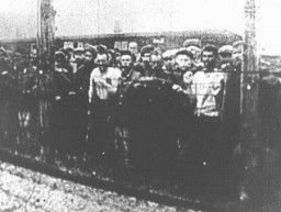 Soviet prisoners of war, survivors of the Majdanek camp, at the camp's liberation. [LCID: 83859]