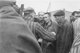 <p>Survivors in Wöbbelin board trucks for evacuation from the camp to an American field hospital for medical attention. Germany, May 4–5, 1945.</p>