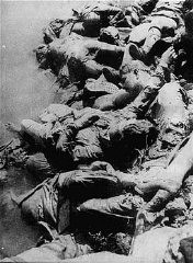 Bodies of Jasenovac prisoners