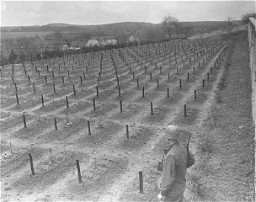 <p>A US Army soldier views the cemetery at Hadamar, where victims of the Nazi euthanasia program were buried in mass graves. This photograph was taken by an American military photographer soon after the liberation. Germany, April 5, 1945.</p>