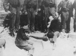 <p>Two Jewish men captured by the SS pull a woman from an underground bunker during the suppression of the Warsaw ghetto uprising. Warsaw, Poland, May 8, 1943.</p>