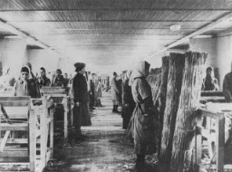<p>Romani (Gypsy) inmates stand at attention during an inspection of the weaving mill, site of forced labor in the Ravensbrück concentration camp.  In this workshop prisoners wove reed mats used to reinforce roads in swampy regions of the eastern front. Germany, between 1941 and 1944.</p>
