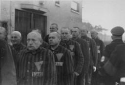 "<p>Uniformed prisoners with triangular <a href=""/narrative/5056/en"">badges</a> are assembled under Nazi guard at the Sachenhausen concentration camp. Sachsenhausen, Germany, 1938.</p>"