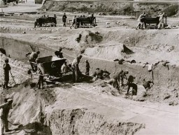 "<p>Forced labor in the quarry of the <a href=""/narrative/11258/en"">Mauthausen</a> concentration camp. Austria, date uncertain.</p>"