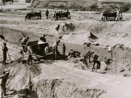 Kerja paksa di tempat penggalian batu di kamp konsentrasi Mauthausen.