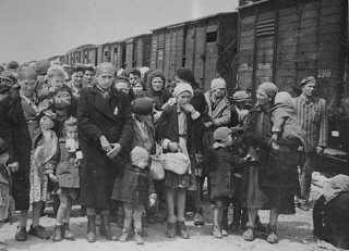 Jewish women and children deported from Hungary, separated from the men, line up for selection.