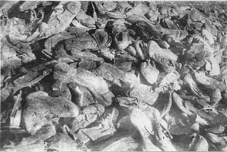 Shoes of victims in the Janowska camp
